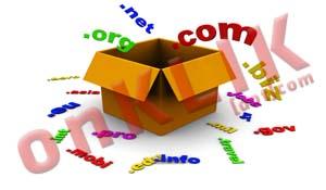 Tips Mencari Domain Berpagerank